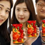 LG stellt fast rahmenloses Smartphone-Display vor