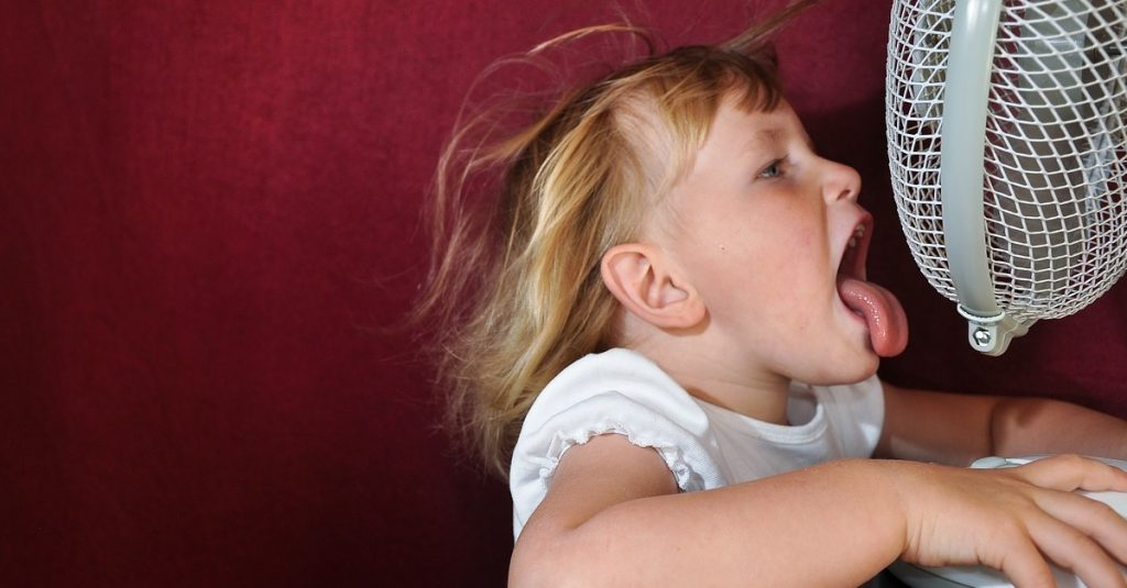 Kaufberatung für Ventilatoren: Einmal frische Brise, bitte