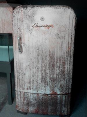 Nicht mehr ganz frisch: Alte Kühlschränke sollte man ausmustern