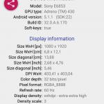 Displaytester: Angaben zum Display