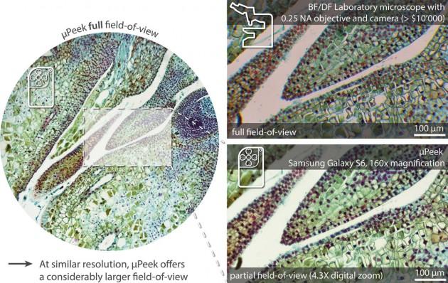 Das µPeek soll mit professionellen Mikroskopen mithalten können.