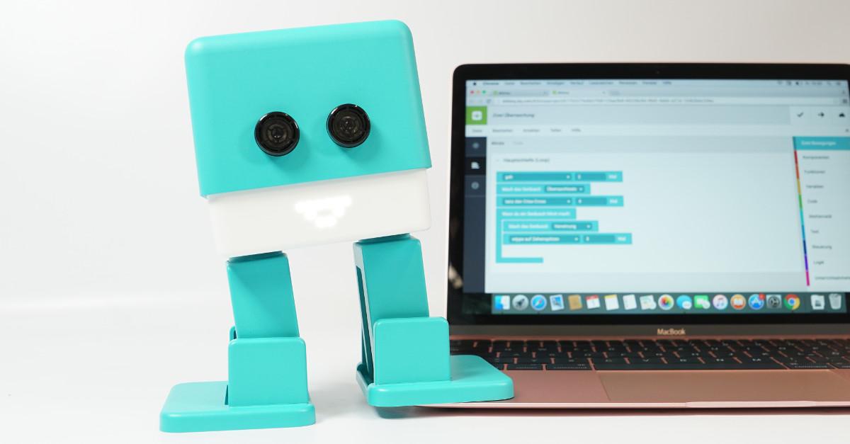 test bq zowi programmierbarer roboter mit k pfchen. Black Bedroom Furniture Sets. Home Design Ideas