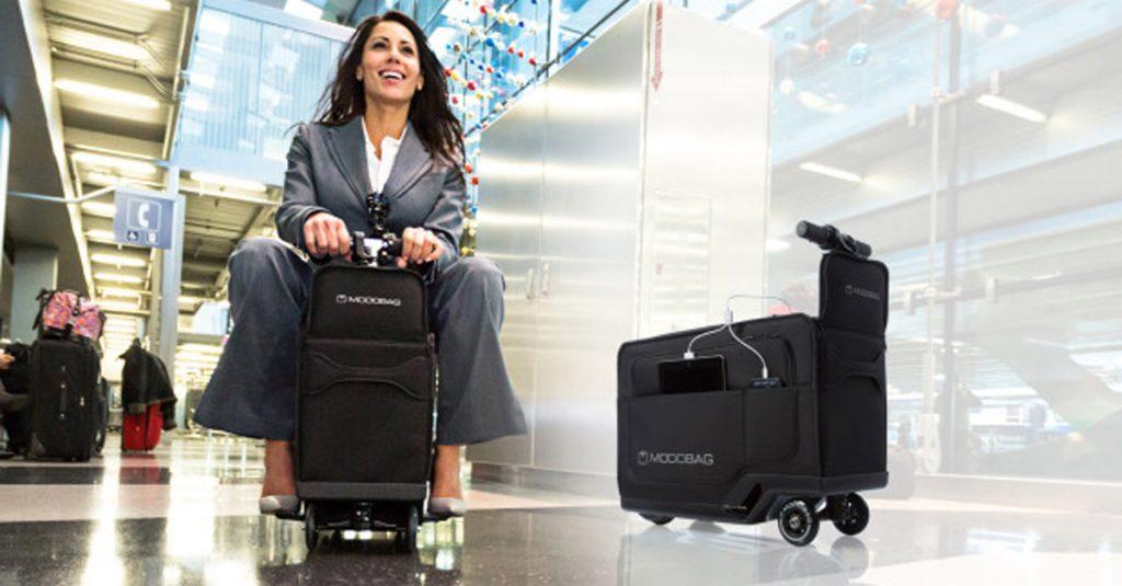 Koffer-Hoffer: Von Abgefahren bis zum neuen Hinterngeweih