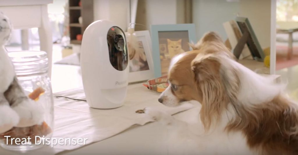 IFA 2016: Acer kommt auf Hund und Katze mit Pawbo+