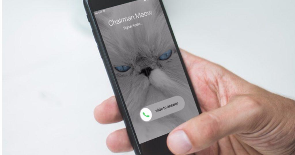 Messenger Signal unterstützt nun auch verschlüsselte Videogespräche