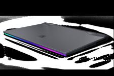 MSI GE66 Raider Gaming Notebook
